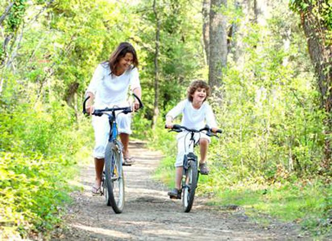 自行车,锻炼体能